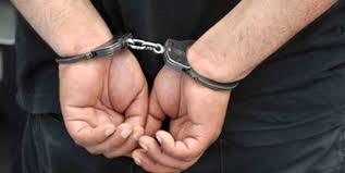 ناجل: دستگیری شاه ماهی ناامنی در خوزستان و ایلام