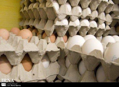 چرا تخم مرغ های قهوه ای گران ترند؟