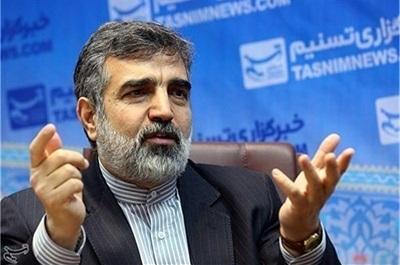 سازمان انرژی اتمی: عدم اجرای پروتکل الحاقی باعث ابهام برنامه هسته ای ایران می شود