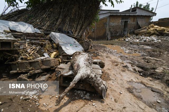 وقتی خبر آوردند خیلیها خانه خراب شدهاند...