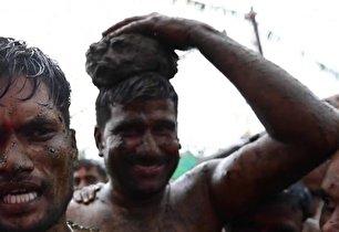 مراسم عجیب روز نبرد با مدفوع گاوها! (+عکس)