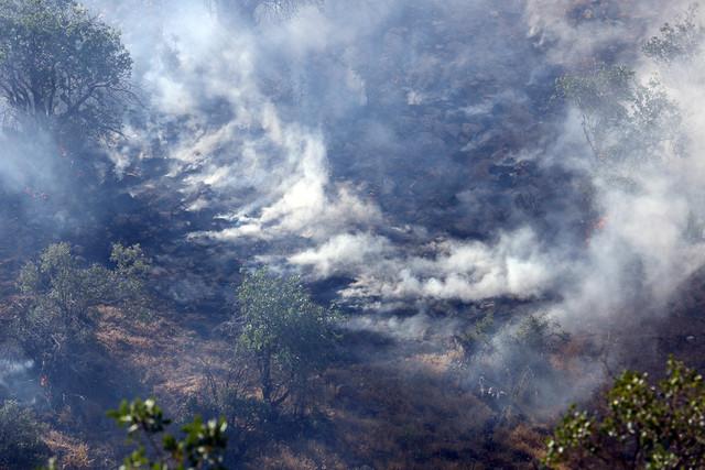 خطر آتش سوزی بیخ گوش جنگلها و مراتع