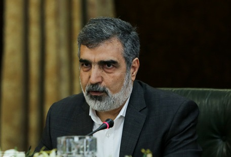 سازمان انرژی اتمی: ذخایر اورانیوم ۲۰ درصد ایران به ۵۵ کیلوگرم رسید