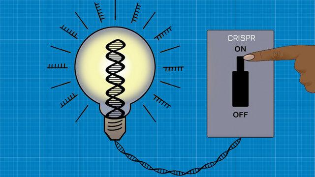 دانشمندان اکنون میتوانند ژنها را خاموش و روشن کنند
