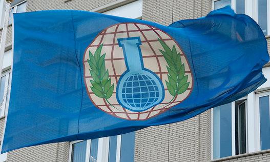 سازمان بین المللی منع سلاح شیمیایی: دولت سوریه، عامل حمله شیمیایی 2018 / دمشق: کار ما نیست