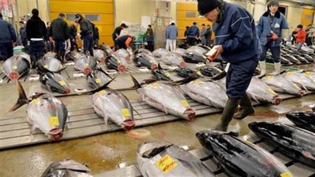 از روز جهانی حبوبات تا روز جهانی ماهی تن/ از جالبترین روزهای جهانی چه میدانید؟