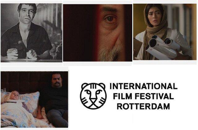 جشنواره روتردام هلند
