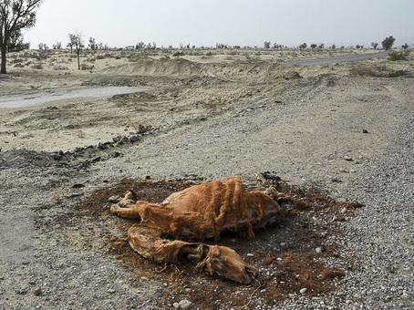 خشکسالی بی سابقه در مناطقی از کشور/ هشدار به مسئولان آب