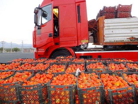 مجوز یک ماهه عراق به گوجه های ایرانی