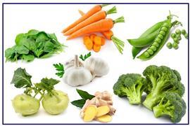 از سبزی های فراسودمند غافل نشویم