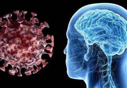 محققان: کرونا حجم ماده خاکستری مغز را تغییر میدهد