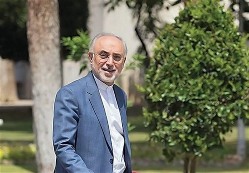 صالحی: فعلاً برای کاندیداتوری تصمیم نگرفتهام