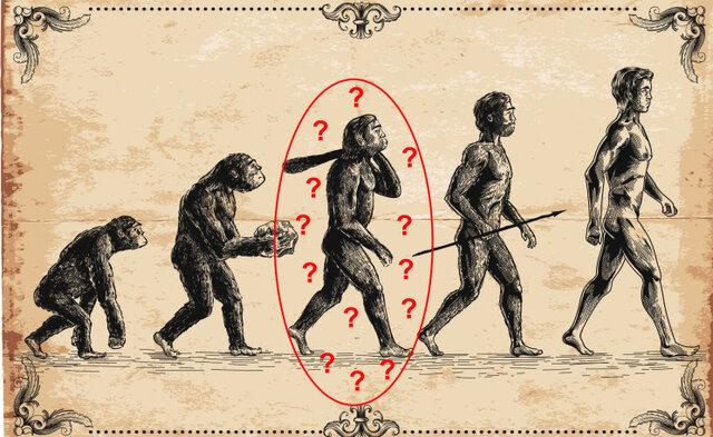 محققان: اجداد انسان میمونها نیستند