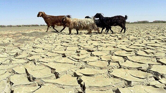 خشکسالی از آنچه به نظر می آید، شدیدتر است