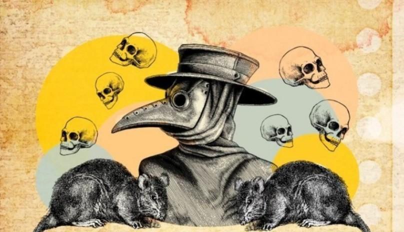 موش ها مقصر انتشار طاعون (مرگسیاه) نبودند