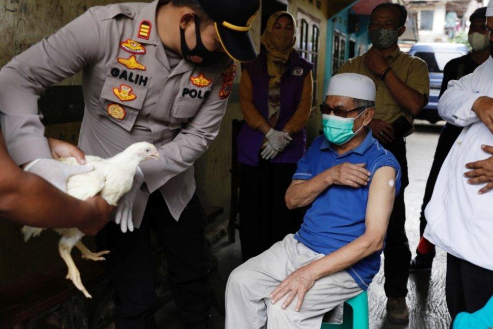 مرغ، گاو و آپارتمان جایزه برندگان قرعه کشی واکسن در آسیا