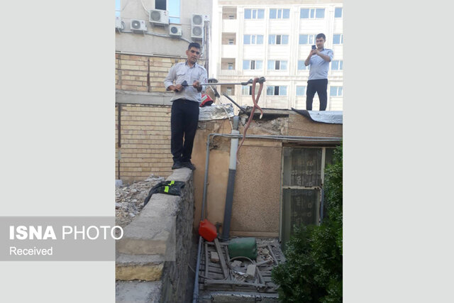 زندهگیری مار 2 متری از سقف خانه ای در زنجان (+عکس)
