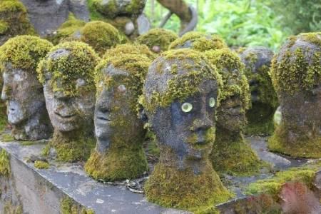 باغ مخفی هنرمند فنلاندی