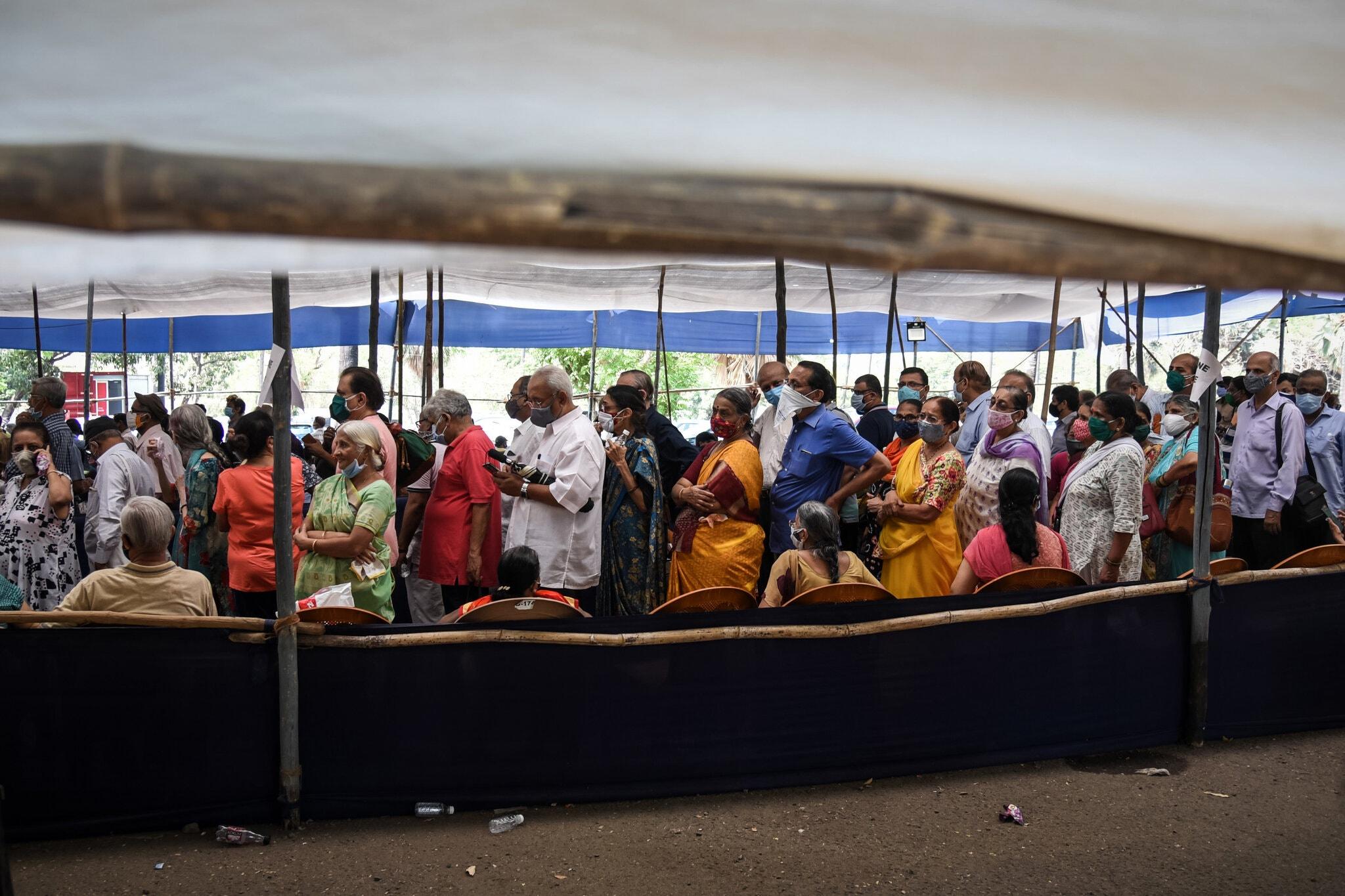 صفواکسن در هند