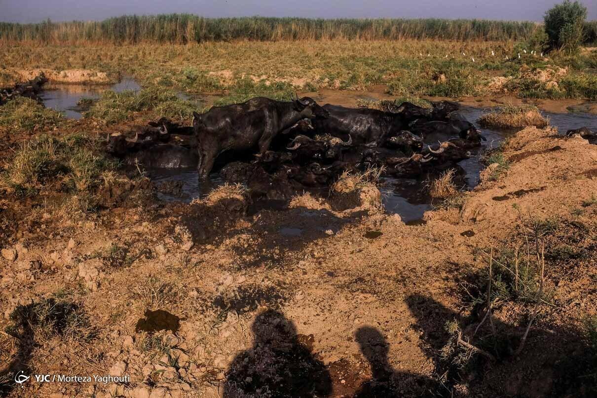 کمبود آب در خوزستان