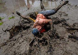 جشن شالیکاری در نپال (عکس)