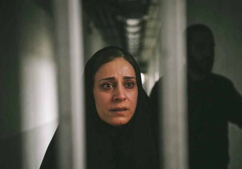 قصیده گاو سفید: باید ببازی! سینمای ایران در جشنواره فیلم اسرائیل