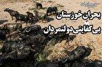 آب را با تونل میبرند، با تانکر برمیگردانند! خوزستان قربانی بیتدبیری دولتمردان (فیلم)