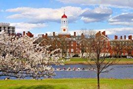 """۵ سلبریتی آمریکایی که در دانشگاه """"هاروارد"""" تحصیل کردهاند"""