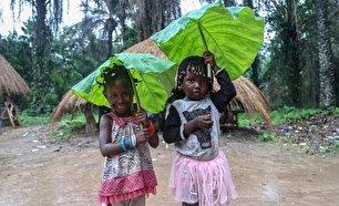 چتر طبیعی کودکان گینهای هنگام بارش باران (+عکس)