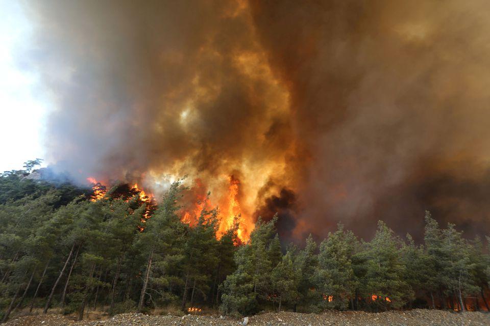 آتش سوزی ترکیه