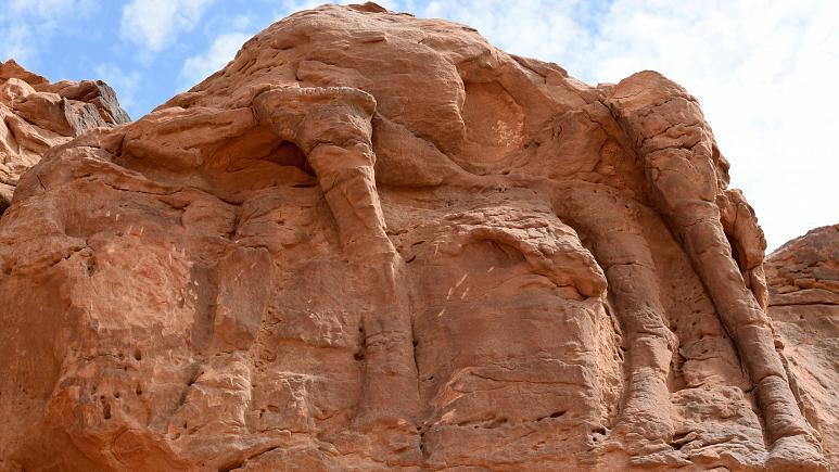 شترهای حجاریشده در عربستان سعودی، قدیمیتر از اهرام مصر