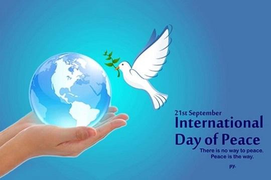 روز جهانی صلح؛ «نه» به نفرت پراکنی آنلاین و آفلاین/ در ستایش صلح با خویشتن