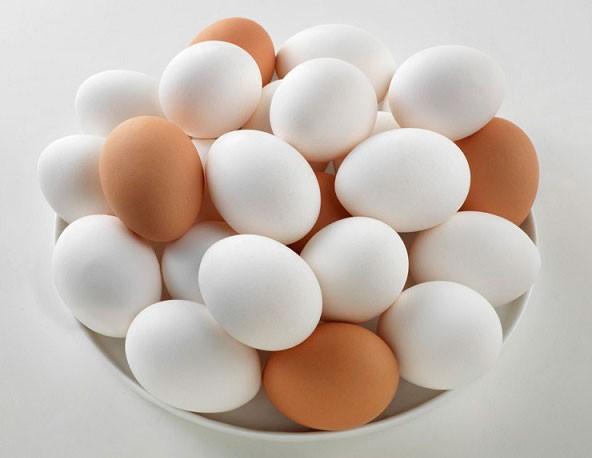 تخم مرغ و شیر؛ پروتئینهایی حتی برا گیاهخواران