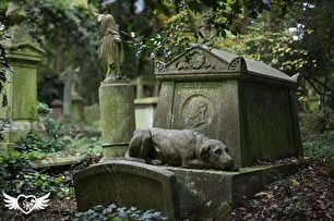 10 قبرستان که خون را در رگ منجمد میکنند!