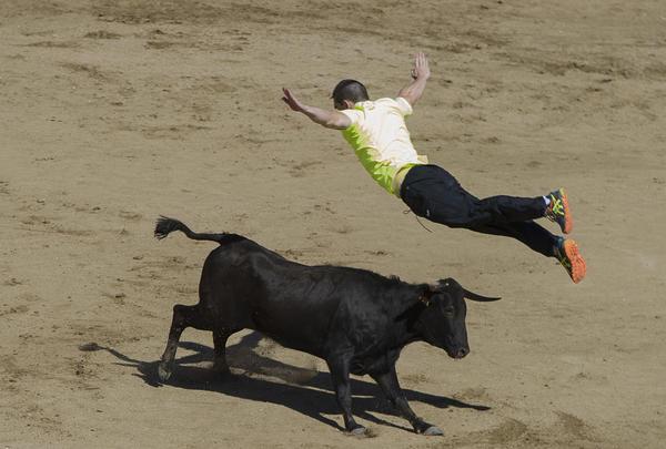 گاو بازی در جریان جشنواره ای در سن سباستین اسپانیا