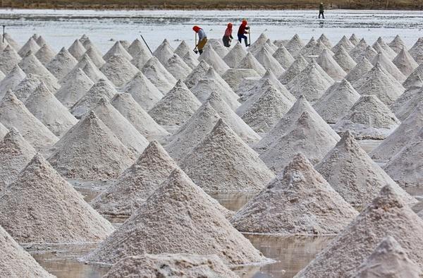 کارگران در حال برداشت نمک – گانسا چین