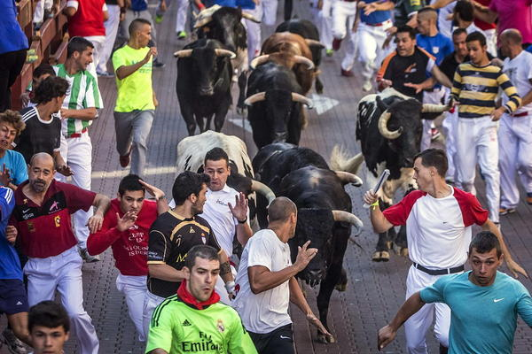 جشنواره های گاو بازی و گوجه در اسپانیا