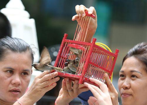آزاد کردن پرنده از قفس در مقابل معبدی در بانکوک که دو هفته پیش هدف حمله تروریستی قرار گرفت