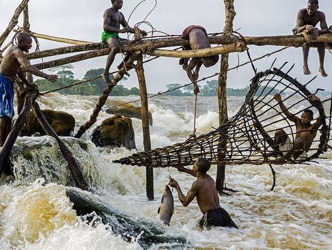 ماهیگیری در رود کنگو در جمهوری دموکراتیک کنگو