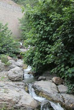 ماسوله . استان گیلان - مجید حبیبی
