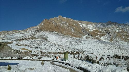 کوه گرمه- ملایر- استان همدان- حمید