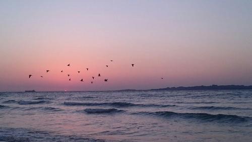 طلوع خورشید - جزیره قشم- محمد شب خیز