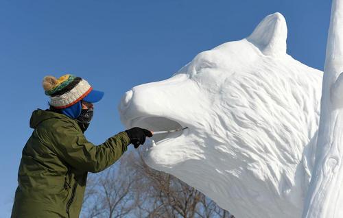 پیکر تراش کره ای در حال ساخت یک مجسمه برفی از خرس در نمایشگاه سازه های برفی و یخی در هاربین چین