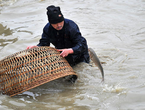 ماهیگیری روستایی چینی