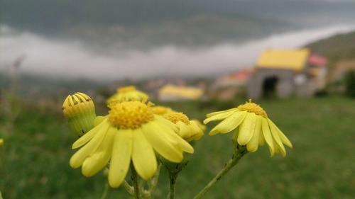 روستای فیلبند-  آمل-  مسعود شنوایی