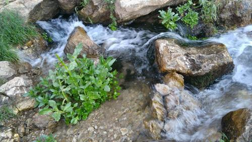 سراب ابکت- شهرستان درود- استان لرستان- سجاد رحمتی