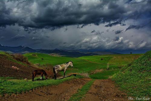 طبیعت سردشت- آذربایجان غربی- امید فرخ