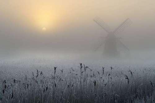 گذر خورشید رنگپریده از میان مه غلیظ  این عکس ما را به یک صبح بهاری در شهر سافک در شرق انگلیس میبرد. خورشید برای عبور از میان مه غلیظ به سختی در حال بالا آمدن است. این چشمانداز از آفتاب رنگ پریده منطقه سرمازده در اطراف آسیاب هرینگ فلیت، یادآور اثر معروف ویلیام ترنر نقاش نامی است که با لنز دوربین اندرو بیلی، ثبت شده است.