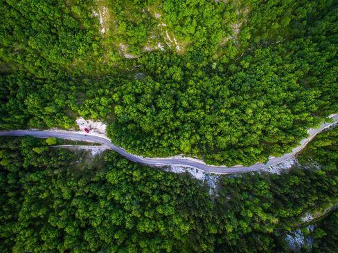 تصویری هوایی از طبیعت سبز منطقه سوسیج کرواسی