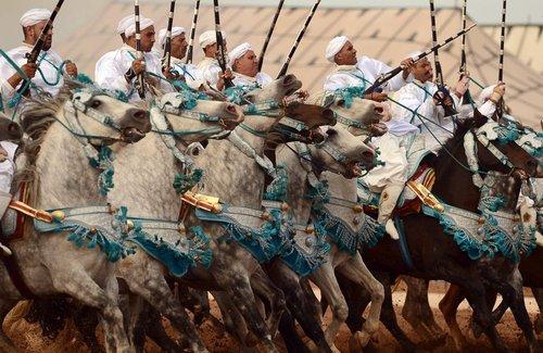 مسابقات سنتی اسب سواری در شهر بندری الجدیده مراکش